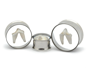 Embedded Coyote Teeth Plugs