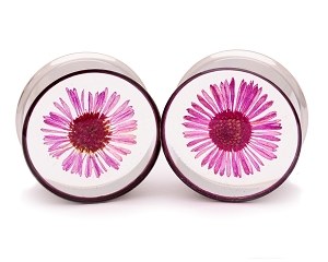 Embedded Pink Daisy Flower Plugs