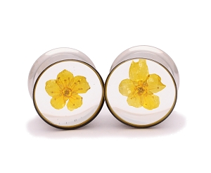 Embedded Yellow Bridal Wreath Flower Plugs