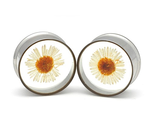 Embedded Daisy Flower Plugs